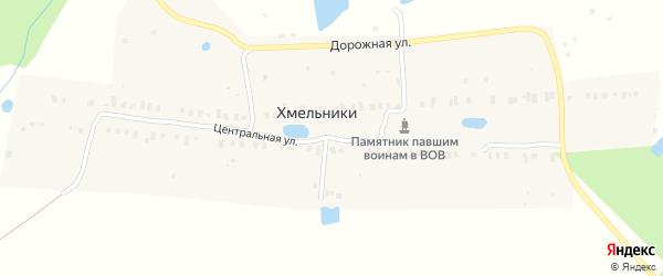 Центральная улица на карте деревни Хмельники Ярославская области с номерами домов