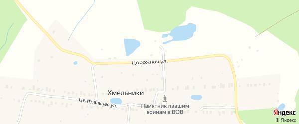 Дорожная улица на карте деревни Хмельники Ярославская области с номерами домов