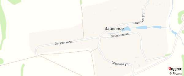 Зацепная улица на карте хутора Зацепного Воронежской области с номерами домов