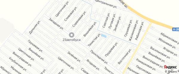 Виноградная улица на карте Строителя с номерами домов
