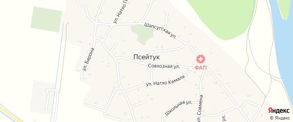 Виноградная улица на карте аула Псейтука Адыгеи с номерами домов