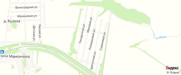 Карта поселка Снт Нива (АПК) в Воронежской области с улицами и номерами домов