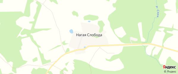 Карта деревни Нагой Слободы в Ярославская области с улицами и номерами домов