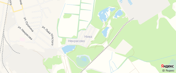 Садовое товарищество Нива на карте Электрогорска с номерами домов