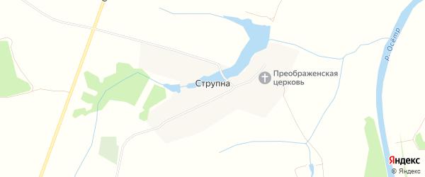 Карта деревни Струпна города Зарайска в Московской области с улицами и номерами домов
