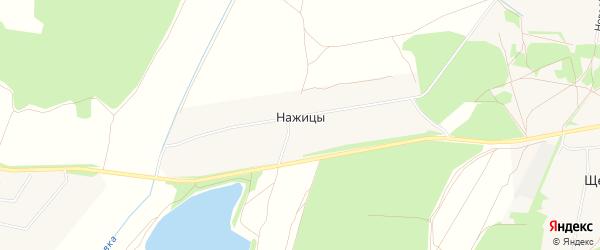 Карта деревни Нажицы города Орехово-Зуево в Московской области с улицами и номерами домов