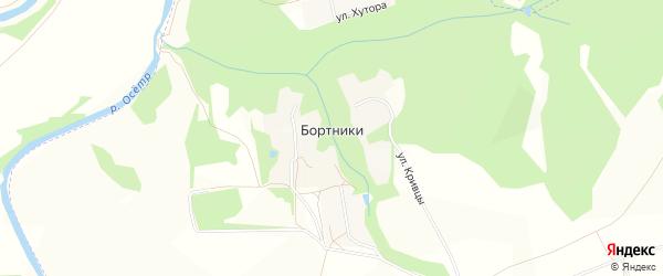Карта деревни Бортники в Рязанской области с улицами и номерами домов