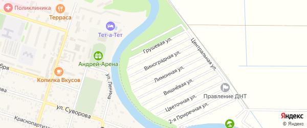 Виноградная улица на карте Мелиоратор-1 Адыгеи с номерами домов