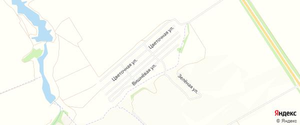 Карта поселка СНТ За рулем в Воронежской области с улицами и номерами домов