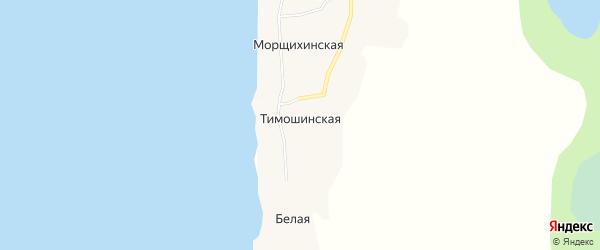 Карта Тимошинской деревни в Архангельской области с улицами и номерами домов