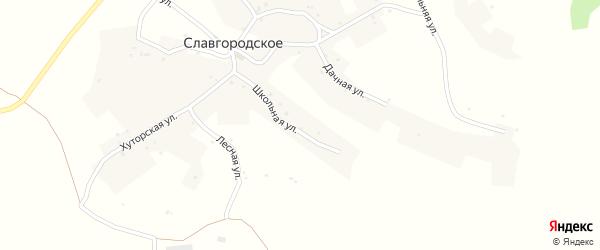 Дачная улица на карте Славгородского села с номерами домов