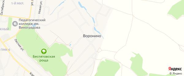 Карта деревни Воронино города Зарайска в Московской области с улицами и номерами домов