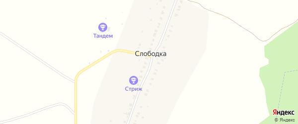 Лесная улица на карте деревни Слободки Владимирской области с номерами домов