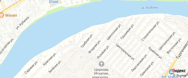 Ароматная улица на карте Зари Адыгеи с номерами домов