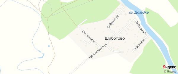 Сосновая улица на карте деревни Шиботово Владимирской области с номерами домов