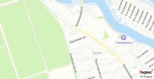 Ореховая улица в микрорайоне Заря в Тимашевске с номерами домов на карте. Спутник и схема онлайн