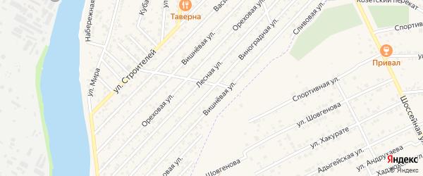 Виноградная улица на карте Дружбы Адыгеи с номерами домов
