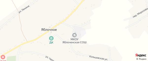 Школьный переулок на карте Яблочного села Воронежской области с номерами домов
