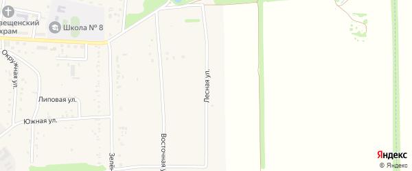 Лесная улица на карте хутора Беднягиной Краснодарского края с номерами домов