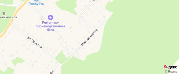 Молодежная улица на карте деревни Анциферовского Бора с номерами домов