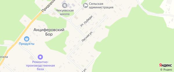 Лесная улица на карте деревни Анциферовского Бора с номерами домов
