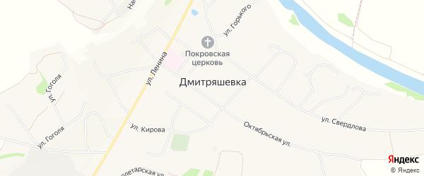 Карта села Дмитряшевки в Липецкой области с улицами и номерами домов