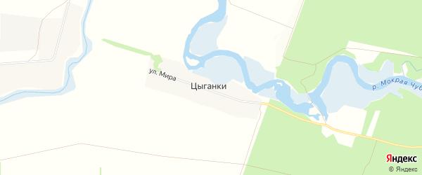 Карта хутора Цыганки в Ростовской области с улицами и номерами домов