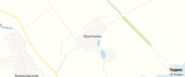 Карта села Крупники в Рязанской области с улицами и номерами домов