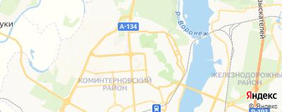 Шаповалов Петр Александрович, адрес работы: г Воронеж, ул Шишкова, д 99