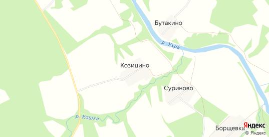 Карта деревни Козицыно в Ярославская области с улицами, домами и почтовыми отделениями со спутника онлайн