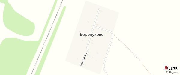 Лесная улица на карте деревни Боронуково Ярославская области с номерами домов
