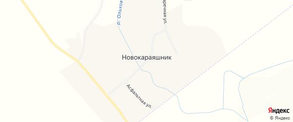 Карта слободы Новокараяшника в Воронежской области с улицами и номерами домов