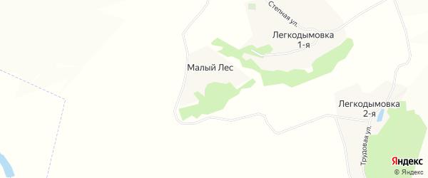 Карта хутора Малого Леса в Воронежской области с улицами и номерами домов