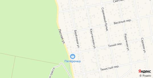 Березовая улица в Нововоронеже с номерами домов на карте. Спутник и схема онлайн