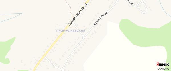 Совхозная улица на карте села Конево Архангельской области с номерами домов