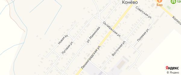 Улица Маминова на карте села Конево Архангельской области с номерами домов