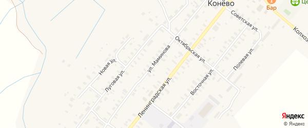Улица Маминова на карте села Конево с номерами домов