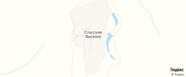 Карта села Спасские Выселки в Рязанской области с улицами и номерами домов
