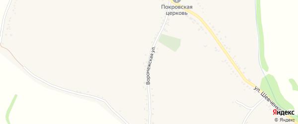 Воронежская улица на карте слободы Шапошниковки Воронежской области с номерами домов
