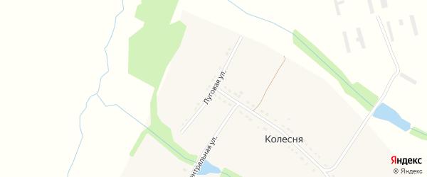 Луговая улица на карте села Колесни Рязанской области с номерами домов