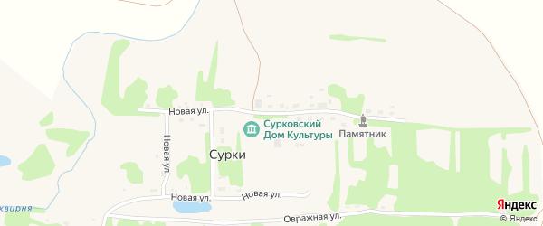 Новая улица на карте села Сурки Липецкой области с номерами домов
