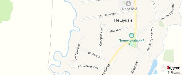 Северная улица на карте аула Нешукай Адыгеи с номерами домов