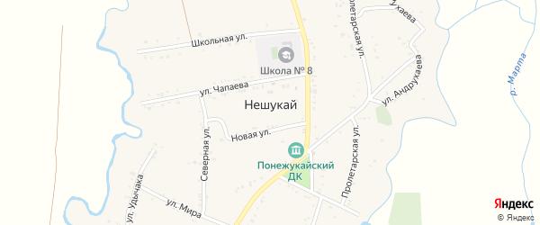 Дорога А/Д Подъезд к а. Нешукай на карте аула Нешукай Адыгеи с номерами домов