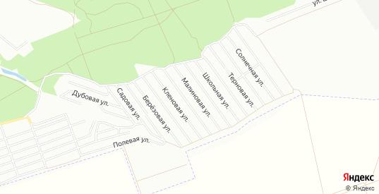 Карта поселка СНТ Дубрава в Воронеже с улицами, домами и почтовыми отделениями со спутника онлайн