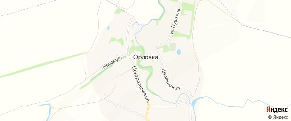 Карта села Орловки в Липецкой области с улицами и номерами домов