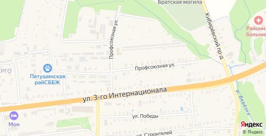 Профсоюзная улица в Петушках с номерами домов на карте. Спутник и схема онлайн