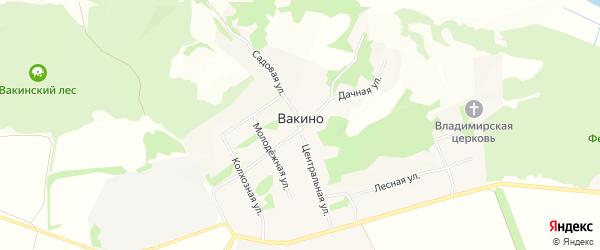 Карта села Вакино в Рязанской области с улицами и номерами домов