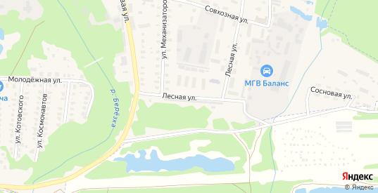 Лесная улица в Петушках с номерами домов на карте. Спутник и схема онлайн
