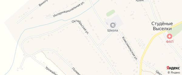 Октябрьская улица на карте деревни Студеные Выселки Липецкой области с номерами домов