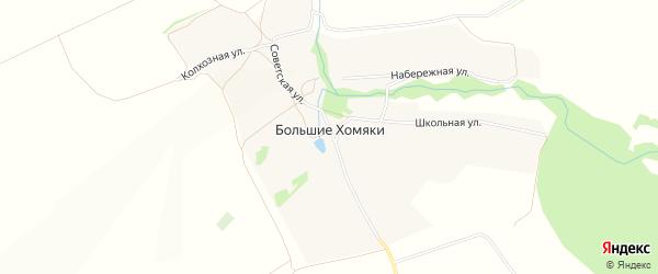 Карта села Большие Хомяки в Липецкой области с улицами и номерами домов